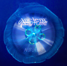 Fossilized A.F.A.R. CD
